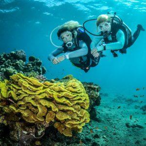 צלילה מודרכת בשמורת האלמוגים של אילת