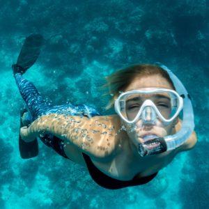 שנירקול במצולות שמורת האלמוגים של אילת