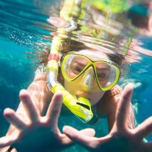 שנירקול בשמורת אלמוגים