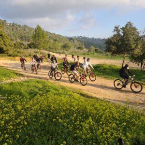 טיול ביער עמינדב עם תומקאר ואופניים